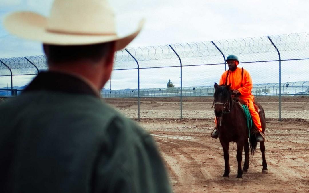 Trenae Nuri: Horse culture